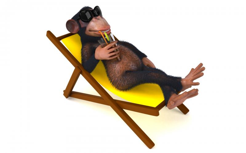 3d-abstract_widewallpaper_monkey-on-vacation_35676